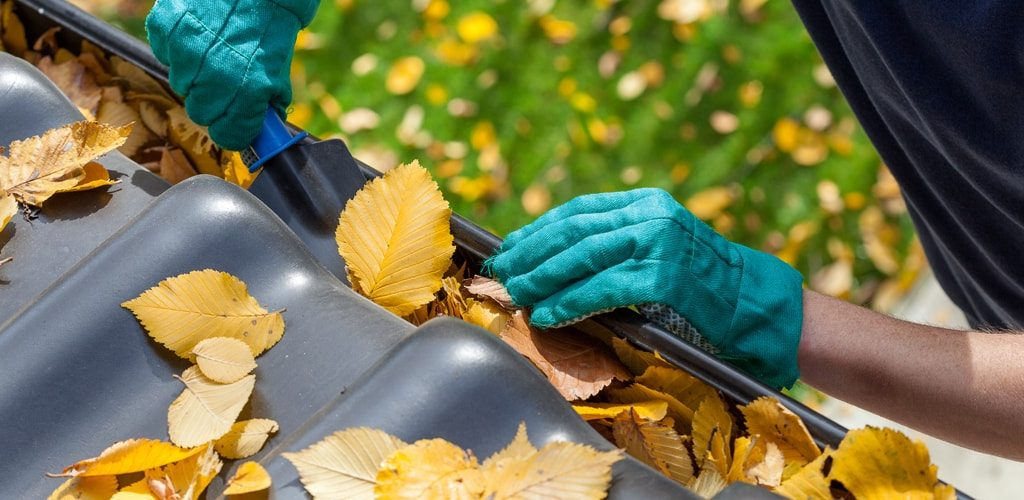 R02-home-garden-cleaning-company-florida-fl