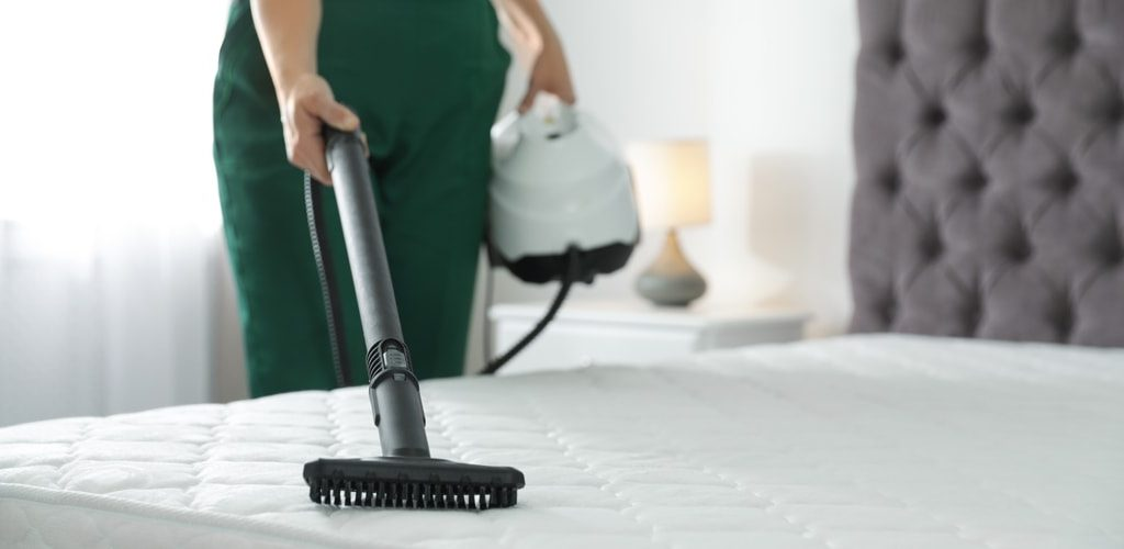 R17-bed-cleaning-disinfect-insect-killer-florida-fl